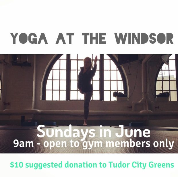 windor yoga june 2017